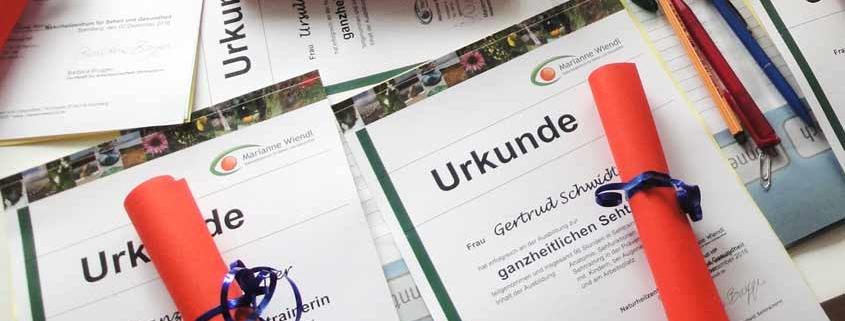 Sehtrainer / In: Qualifizierungsseminar und Zertifizierung für Augentraining und ganzheitliches Sehtraining