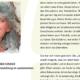 Sehtraining: Das Sehen unserer Kinder